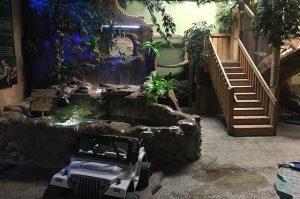 Reptilia Playground